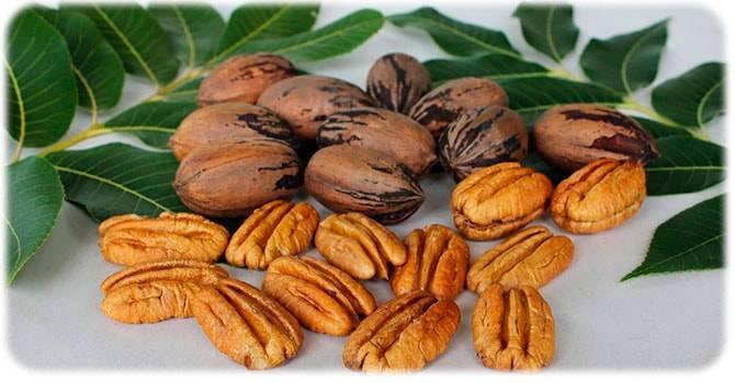 Слойки с орехами и медом — рецепт с фото пошагово